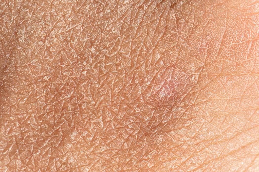 routine beauté pour peau sèche